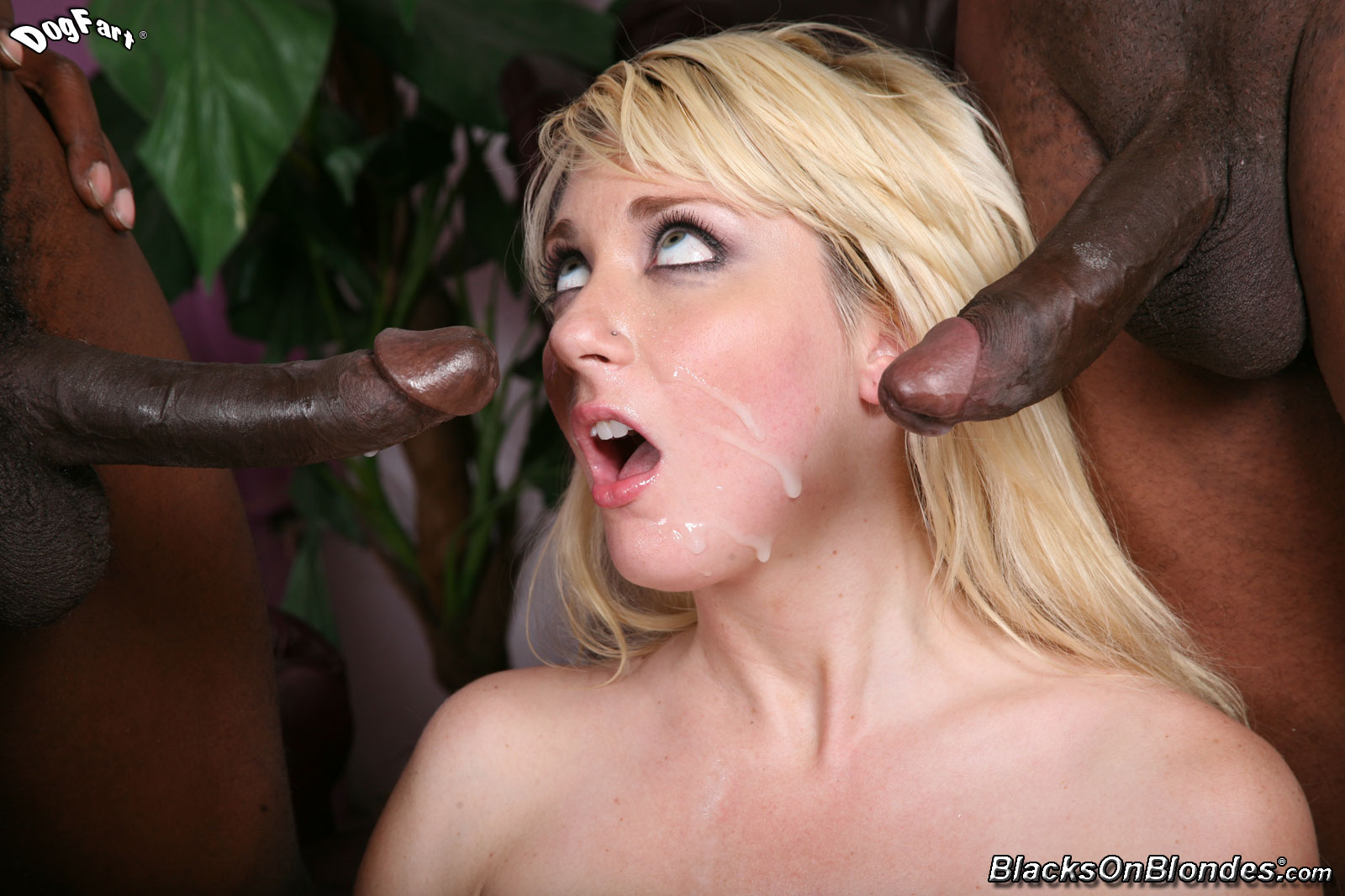 blacks on blonde porn